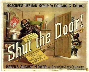 SHUT THE DOOR - BOSCHEE'S GERMAN SYRUP, PATENT MEDICINE - GREEN'S AUGUST FLOWER