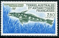 TIMBRE T.A.A.F. / TERRES AUSTRALES NEUF  N° 161 ** FAUNE / LE POISSON DES GLACES