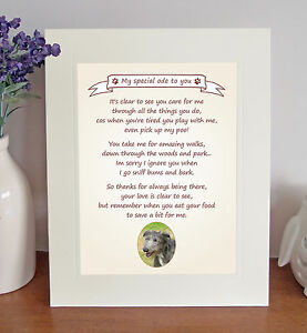 Lurcher Thank You FROM THE DOG Poem 8 x 10 Picture/10x8 Print Fun Novelty Gift