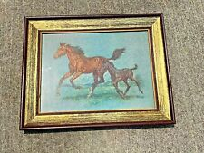 Vintage Mid Century HORSE Mare Colt Kentucky Derby Framed Art Picture ❤️ sj17j