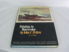 Painting in Watercolor by John C. Pellew 160 Pages Learn To Paint How To Book