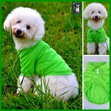 Hundeshirt T.Shirt Welpe Weste Pullover Chihuahua Grün in XS-S-M