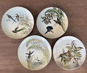 "RARE Raymond Waites - Hummingbird Collection ~ 10-1/4"" Decorative Plate Set Of 4"
