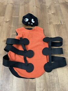 POTTERY BARN KIDS Halloween Spider Costume size 4 6