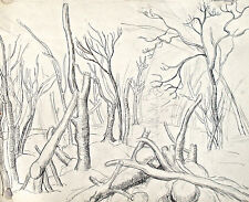 Dorothy Eaton Drawing (XI)  Wooded Landscape