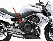 Kawasaki ER6 N 2009 Echt Carbon Seitenteile Rahmen NEU
