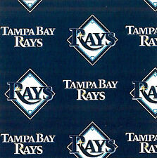 Tampa Bay Rays MLB Baseball Sports Print Fleece Fabric by the Yard s6577bf