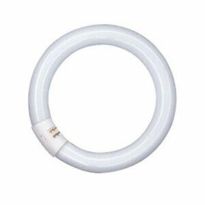 Osram L-Lampe L22W/840C Ringform