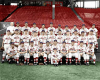 1941 St. Louis Cardinals Photo 8X10 -  Musial COLORIZED - Buy Any 2 Get 1 Free