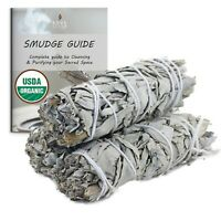 White Sage Smudge Sticks 3 Pack w/ Smudge Guide for Cleansing and Purification