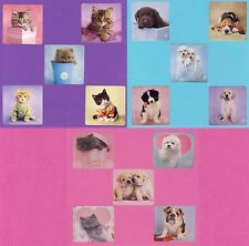 15 Rachael Hale Cats and Dogs Assorted - Large Stickers - Puppies, Kittens