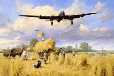 aviation art Dambusters  8 pilot signed Ltd edition WW2 RAF Avro Lancaster print