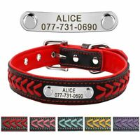 Braided Leather Dog Collar Personalised ID Tag Soft Padded Dogs Pet Engrave Free
