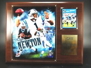 Cam Newton Carolina Panthers Wood Wall Picture 15in, Plaque NFL Football