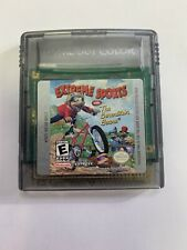 Extreme Sports With The Berenstain Bears (Nintendo Game Boy Color)