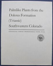 Usgs Triassic Fossil Palm-Like Plants from Colorado, Vintage 1956 - Spectacular!