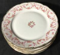 "Schumann Bavaria Original Bridal Rose 1 Dinner Plate(s)10 1/2""~Edge~Gold~Buds"