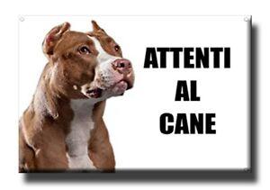1 Magnete - ATTENTI AL CANE 🐶 -  5,5x8cm