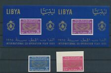 LL93196 Libya 1965 co-operation year perf/imperf fine lot MNH