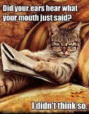 "Funny Cat  refrigerator magnet 2 1/2 x 3 """