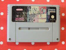 Weaponlord SNES Super Nintendo nur Modul