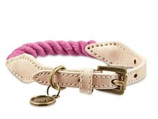 Bond & Co. Rope Dog Collar in Pink, 10-14, Small