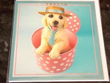 Mad Hatters Dog Themed Card by Tracks Cards. Blank Cards Pack of 6. 1 available.