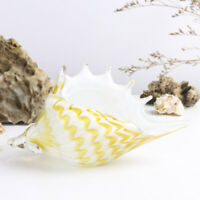 Murano Italy Hand Blown Glass Seashell Art Ocean Conch Sculpture Decor Gift