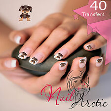 40 x Nail Art Water Transfers Stickers Wraps Decals Doberman #3
