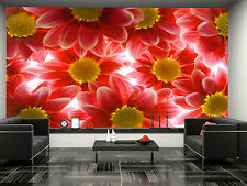 Gerber Flowers Wall Mural Photo Wallpaper GIANT DECOR Paper Poster Free Paste