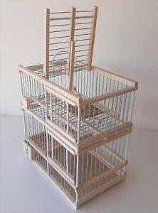 Cage avec un piège // Piège à oiseaux // Cage à oiseaux de chasse