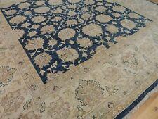 Beautiful 9x9 Pakistani Peshawar Square Oriental Area Rug beige blue