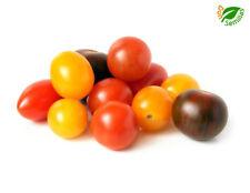 Tomate Cherry Mix ( 50 semillas ) seeds - Cereza Pera Rojo Negro Amarillo Blanco