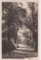 Stapleford Tawney Essex RP Postcard, B698