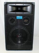 "Paradyme Digital Audio 12"" Passive Speaker-Tested"