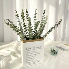 Dekor Real Palnt Natürliche Eukalyptus-Blätter Getrocknete Blume Zweige Steme