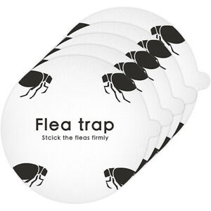 5PCS Disposable Fly Killer Paper Simple Flea Trap Sticky Sticker Round for Home