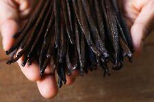 25 grams (Gourmet Grade) Mexican Vanilla Beans - Voladores Vanilla