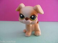 petshop chien / boxer dog N° 235