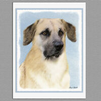 6 Chinook Dropped Ears Dog Blank Art Note Greeting Cards
