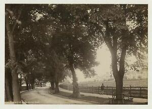 Weston-Super-Mare Bristol Road 1888 Photo By Frith
