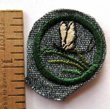 Vintage 1938-1947 Girl Scout INSECT FINDER BADGE Mayfly Water Bug Patch Award