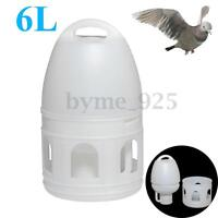 6L 6000ML Removeble White Plastic Drinker With Handle For Pigeons Bird
