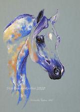 "Portrait of arabian""Magic horse"" ORIGINAL handmade pastel painting.Equine art 1"