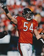 BRIAN URLACHER  CHICAGO BEARS   ACTION SIGNED 8x10