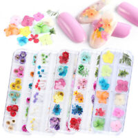 Summer Nail Dry Flower Real Floral 3D Nail Art Flower Decoration Natural Floral