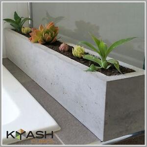 Concrete succulent, cactus planter box, large rectangular indoor plant pot