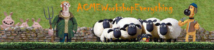 ACMEWorkshopEverything ACMEWE