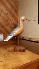 Bar-tailed godwit shorebird decoy confidence decoy duck decoy Casey Edwards