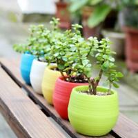 Indoor Outdoor Garden Balcony Plant Pot Bonsai Planter Office Home Decor.AU